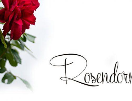 """Leseprobe aus """"Rosendorn"""" (Kurzroman)"""