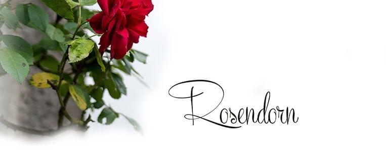 Rosendorn