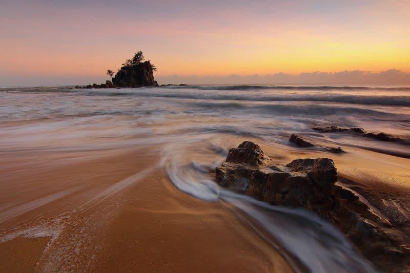 Zypresse und Meer