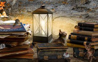 Jagd auf die magischen ersten Worte